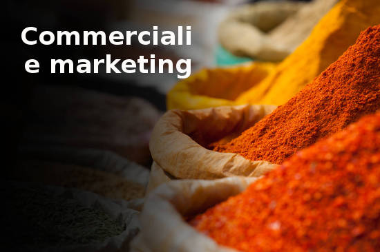 Traduzioni commerciali e marketing
